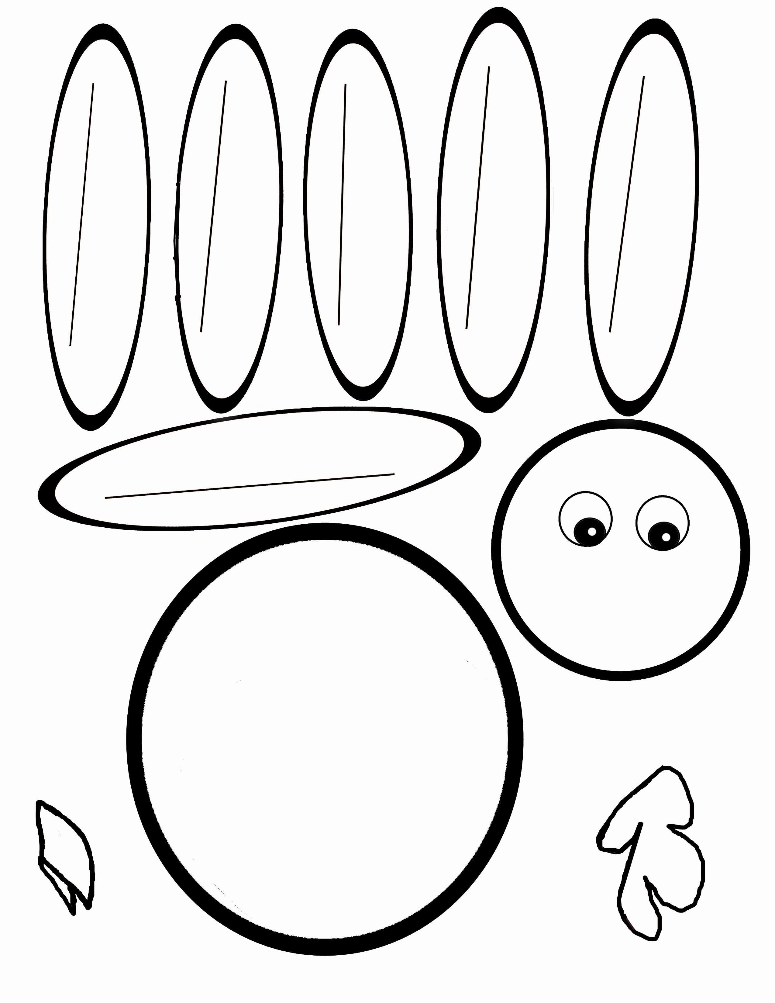 Scissor Cutting Turkey Template   Pediatric Ot   Turkey Template - Free Printable Thanksgiving Turkey Template