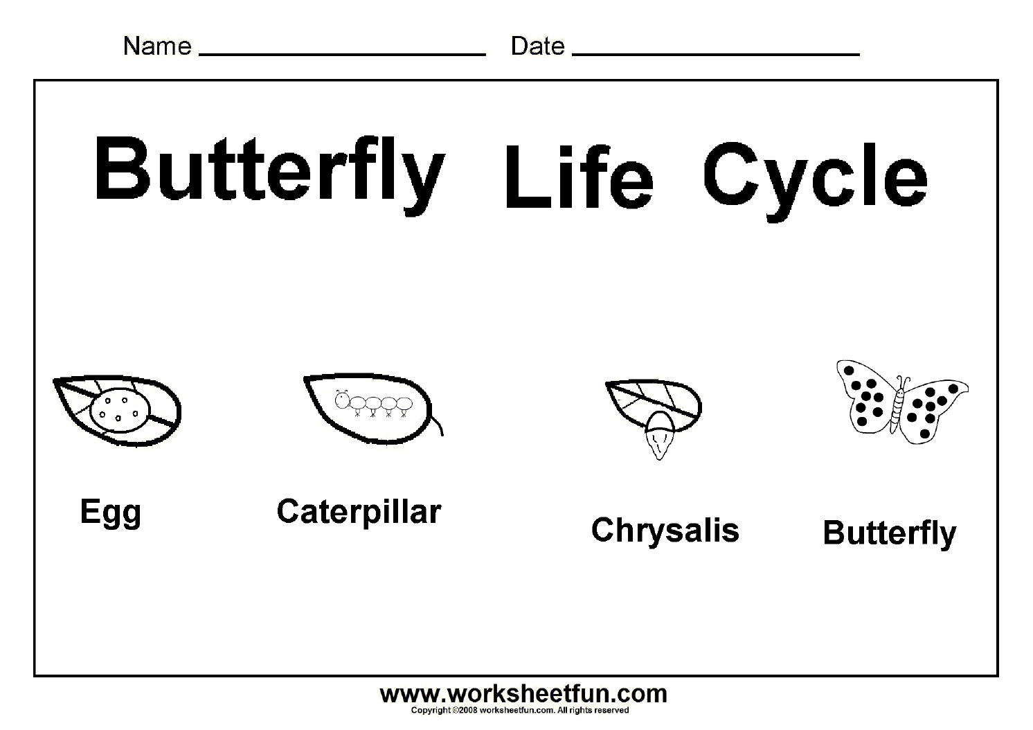 Worksheet : Butterfly Life Cycle One Free Printable Science - Free Printable Science Worksheets